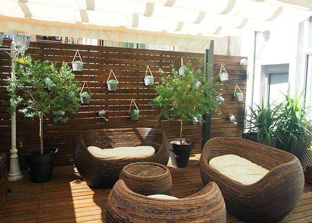 violeta boutique terrace plants