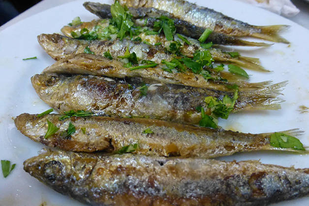 barceloneta plate fish