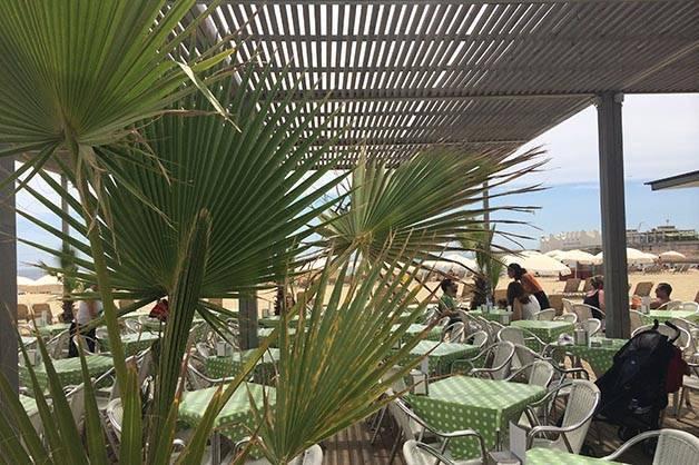 amalur beach bar