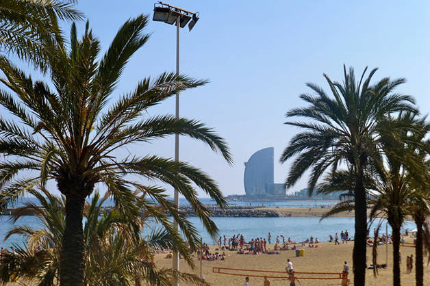 beaches of Barcelona palm trees hotel W