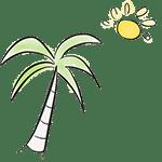 drawing palm tree sunshine