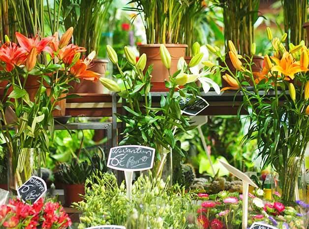 market Barcelona mercat de la concepcio flowers
