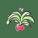 houseplant drawing