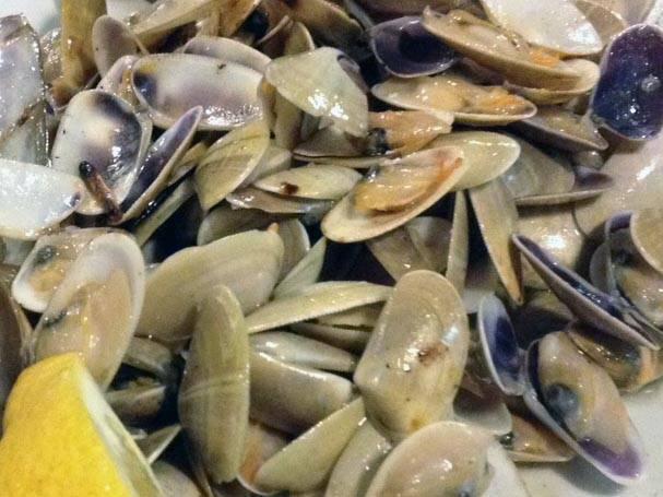 shellfish la paradeta