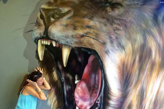 Museum of Illusions lion head