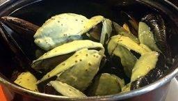 la Muscleria mussels