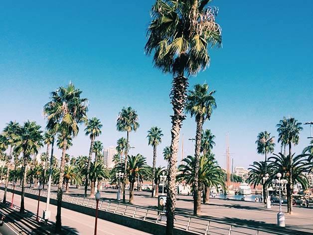 Barcelona in a few hours