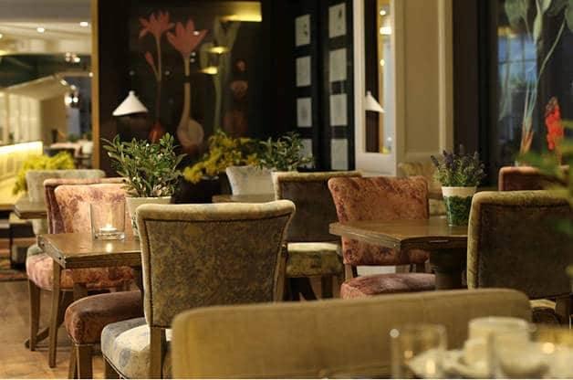 ofelias hotel dining room