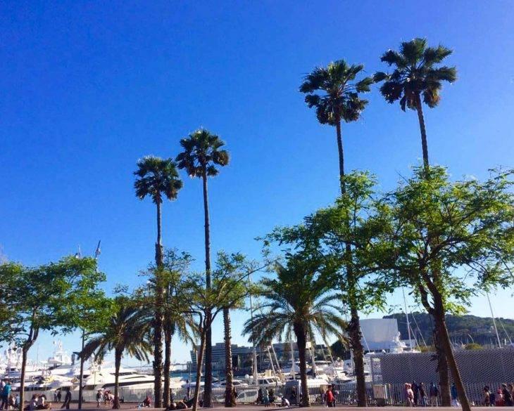 activities in Barcelona: our top tips