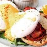 brunch Avenue eggs benedict