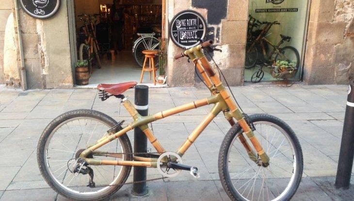 bicycle street art tour, bamboo bike